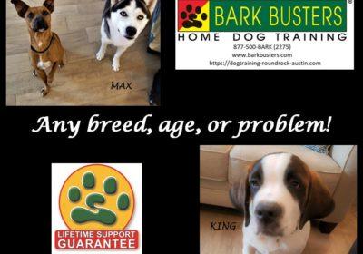 #husky #saintbernard #gsdmix #doormanners #barking #obediencetraining #dogtrainingmanor #dogsofbarkbusters #barkbusters #speakdog #inhomedogtraining